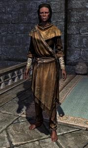 Adept Robes 00010CEE3