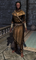 Adept Robes 00010CEE3.png