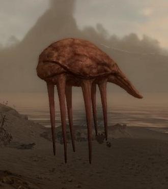 File:Netch Calf (Dragonborn).jpg