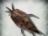 Пепельный батат (Morrowind)