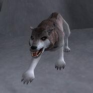 Снежный волк (Bloodmoon)
