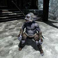 Рьеклинг (Dragonborn) 01