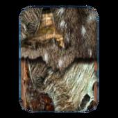 Простая рубашка (Morrowind) 7 сложена