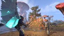 ESO Morrowind Warden Wings 1487177326