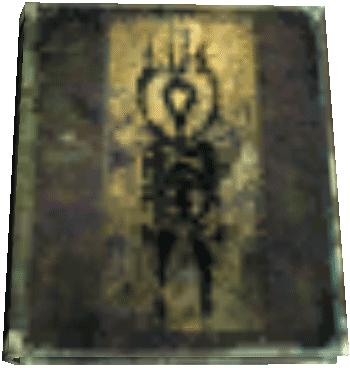 Octavo06