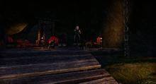В вампирском логове