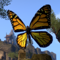 ESO Butterfly.png