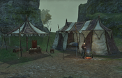 Lady Laurent's Camp