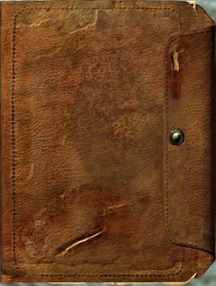 File:Journal cover meeko.png