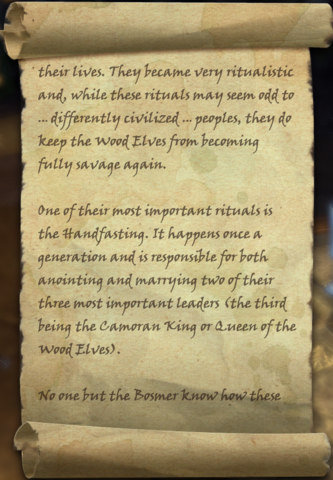 File:Diplomacy During the Handfasting (3).png