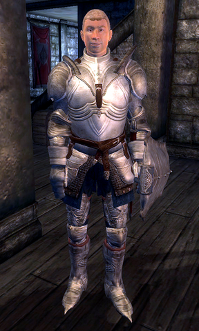 File:Fighters Guild Porter Bravil.png