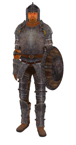 File:IronArmor.png