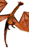 Nafaalilargus (Redguard)