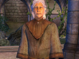 The Prophet (Knights of the Nine)