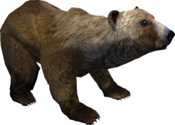 Oblivion Brown bear