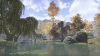 Сиродил (Online) — Озеро в Одиноких холмах