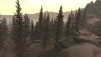 Солстхейм лес DG