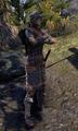 Ashlander Guard.png
