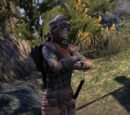 Ashlander Guard
