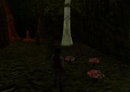 Redguard - The Goblin Caves - Harmful Shrooms