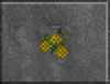 Yellow Berries (Daggerfall)