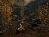 Рифт — Лагерь Братьев Бури