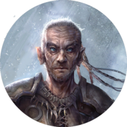 Bosmer avatar 4 (Legends)