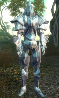 TESIV-SI Character OrderKnight