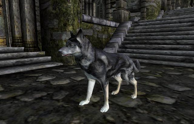 File:Ushnar's Dog.png