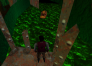 Redguard - The Goblin Caves - Waiting for the Cave Fish