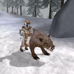 Riekling jeździec z gry The Elder Scrolls III: Przepowiednia