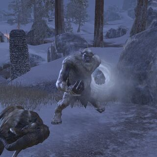 Wrothgardzki Ogr z gry The Elder Scrolls Online