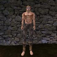 Простые штаны (Morrowind) 16 (муж)