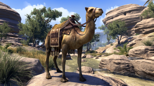 File:Hammerfell Camel.png
