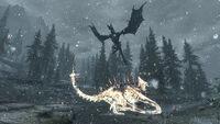 Sahloknir's Resurrection