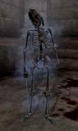 Skeleton of Casnar