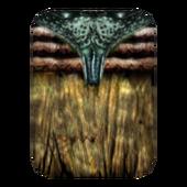 Дорогая рубашка (Morrowind) 4 сложена
