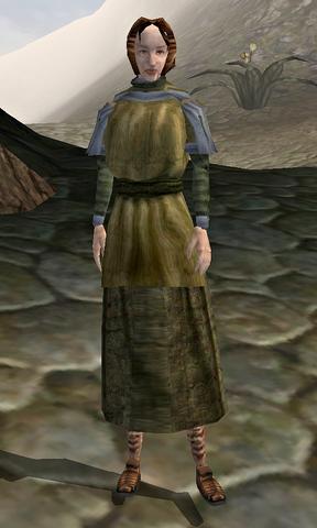 File:Vori (Morrowind).png