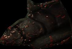 Хитин жука-панцирника