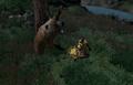 Bear Season Attack.png