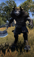 Minotauro (Online)