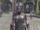 Order Crusader