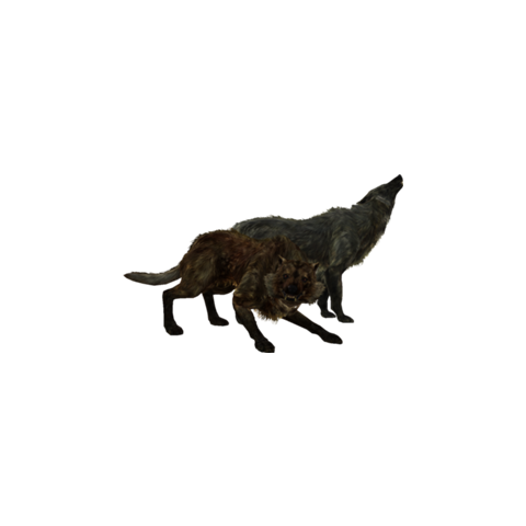 Ekran ładowania przedstawiający wilka alfa i wilka lodowego