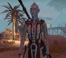 Captain Virindi Slave-Taker