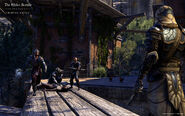 TESO Thieves Guild capture officille