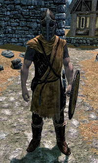 Whiterun Hold Guard Skyrim
