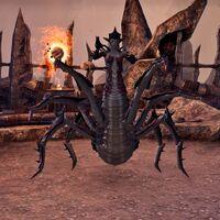 Даэдра-паук (Online)