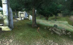 Колдун и скамп охраняют вход в Виндасель