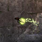 ON-питомец-Преданный светлячок