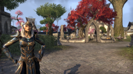 Queen Ayrenn (Vulkhel Guard)